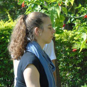 Mindfulence Meditation teacher Training