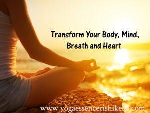Pure essence of yoga